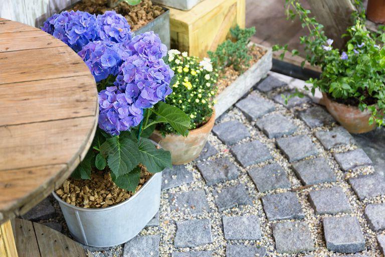 μεταμόρφωση κήπου φυτά πλακόστρωτο