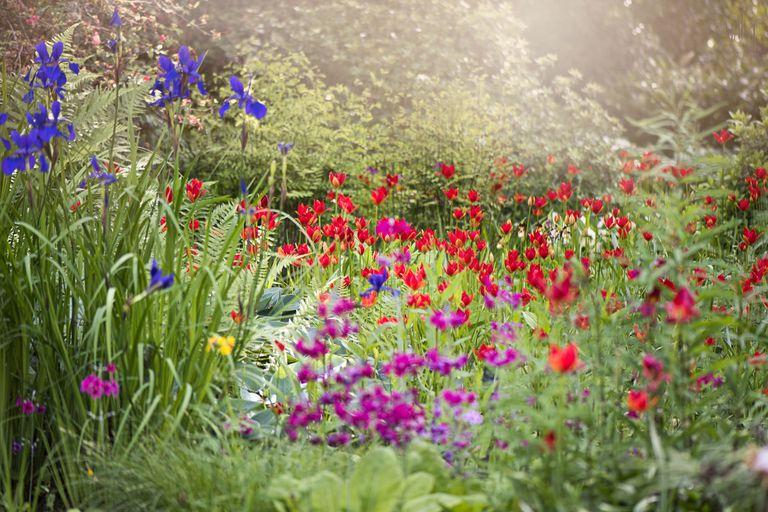 μεταμόρφωση κήπου τέσσερις εποχές