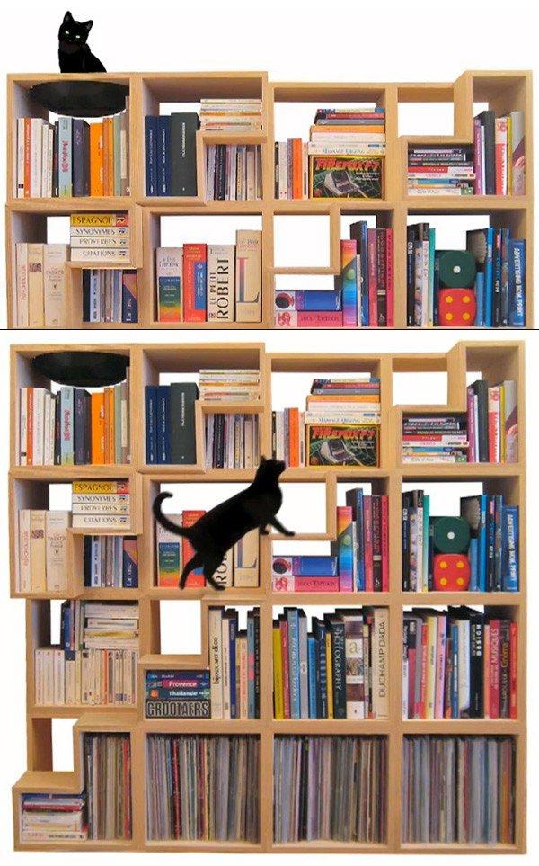 πολλαπλή χρήση βιβλιοθήκη γάτες