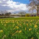Μαγευτικοί Βοτανικοί Κήποι