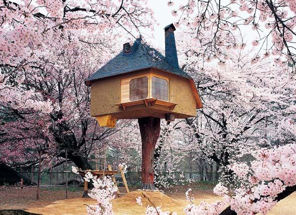 παραμυθένια δεντρόσπιτα Ιαπωνία