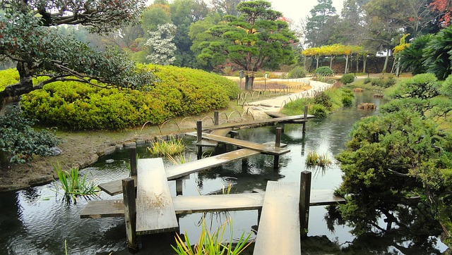 μαγευτικοί κήποι στην Ιαπωνία