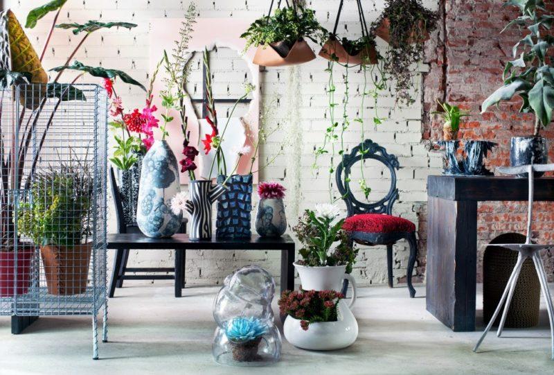 αξεσουάρ σπιτιού φυτά και λουλούδια